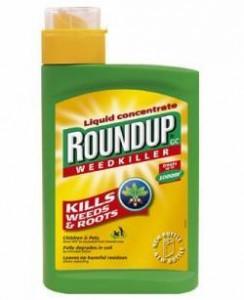 gmo roundup